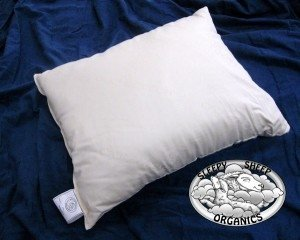 Sleepy Sheep organic pillow - wool fill